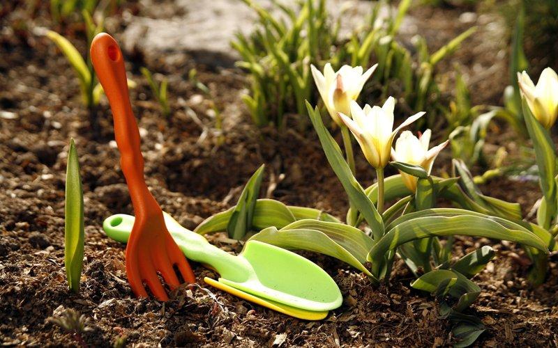 Весенние садовые работы. Готовимся к лету